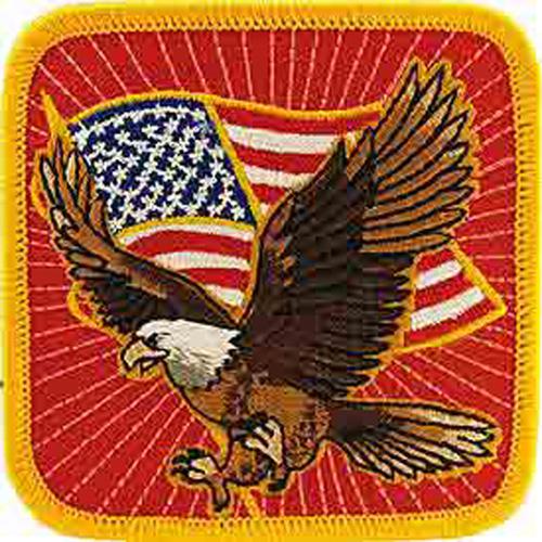 Patch-Usa Eagle Flag