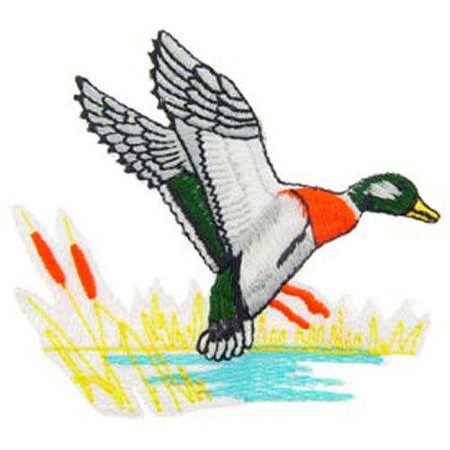 Patch-Duck Mallard Wet