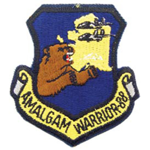 Patch-Usaf Amalgam Warrio