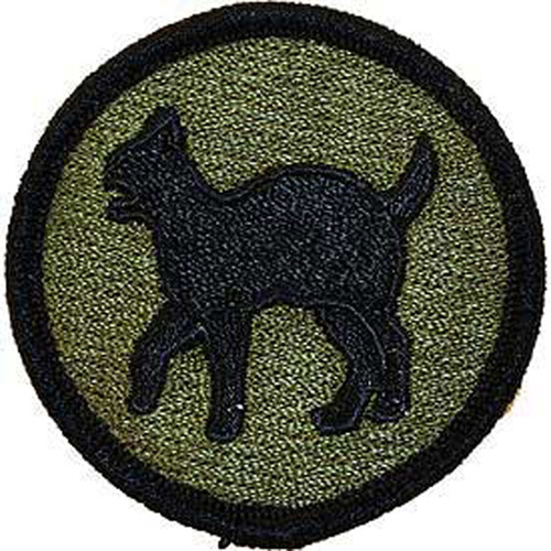 Patch-Army 081st Reg.Read