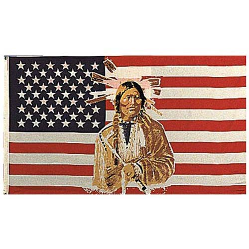 US American Indian Flag