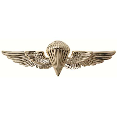 USN-USMC Parawing Pin