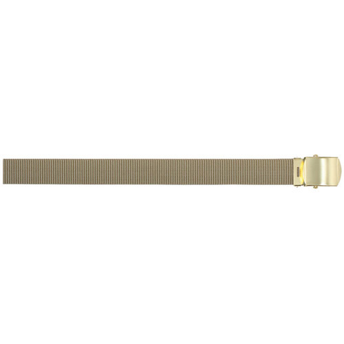 Web Belt With Brass Buckle