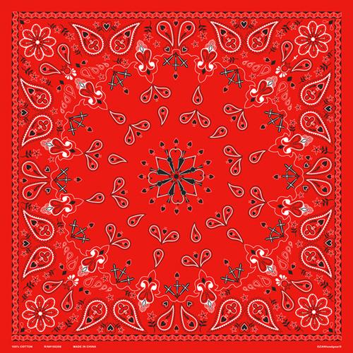 Red Paisley Bandanna