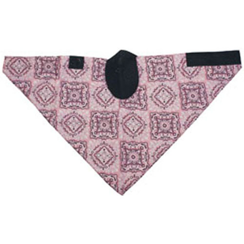 Neodanna and reg Mask Cotton-Neoprene Pink Paisley