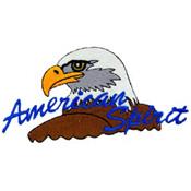 Patch-Usa Eagle/American
