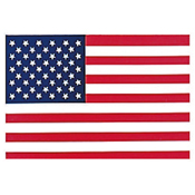 US Flag Face Gum Decal